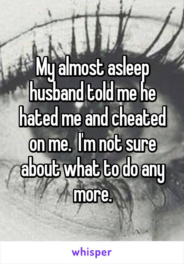 My almost asleep husband told me he hated me and cheated on me.  I'm not sure about what to do any more.
