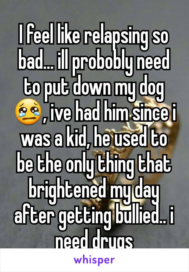 I feel like relapsing so bad... ill probobly need to put down my dog 😢, ive had him since i was a kid, he used to be the only thing that brightened my day after getting bullied.. i need drugs