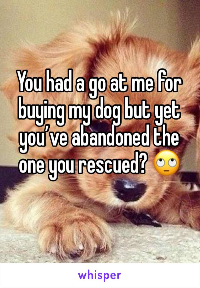 You had a go at me for buying my dog but yet you've abandoned the one you rescued? 🙄