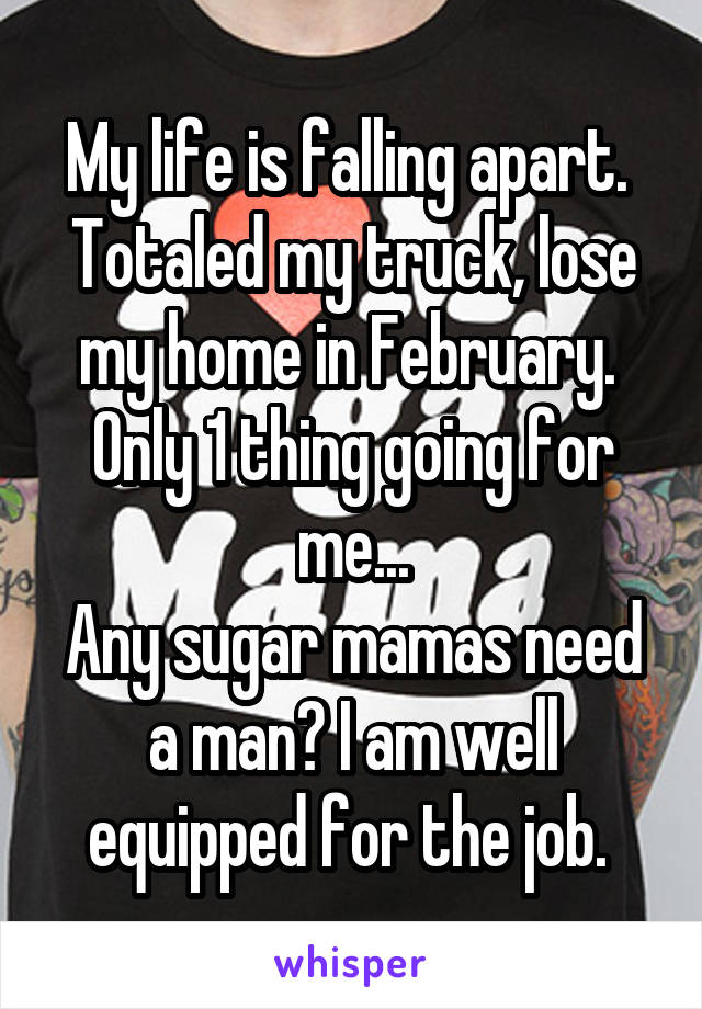 My life is falling apart.  Totaled my truck, lose my home in February.  Only 1 thing going for me... Any sugar mamas need a man? I am well equipped for the job.