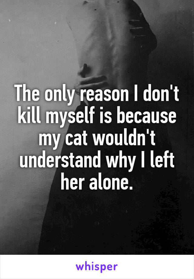 The only reason I don't kill myself is because my cat wouldn't understand why I left her alone.