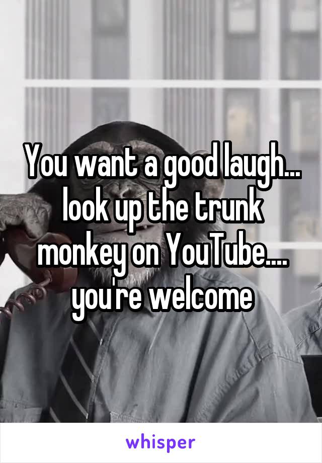You want a good laugh... look up the trunk monkey on YouTube.... you're welcome