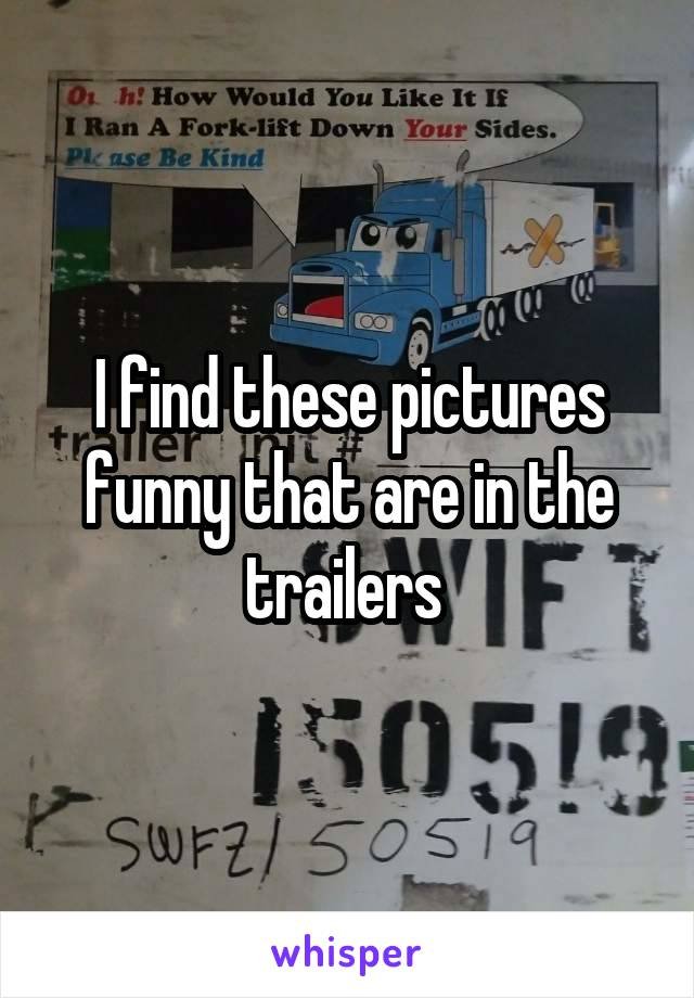 I find these pictures funny that are in the trailers