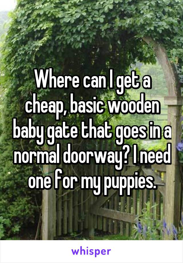 Where can I get a cheap, basic wooden baby gate that goes in a normal doorway? I need one for my puppies.