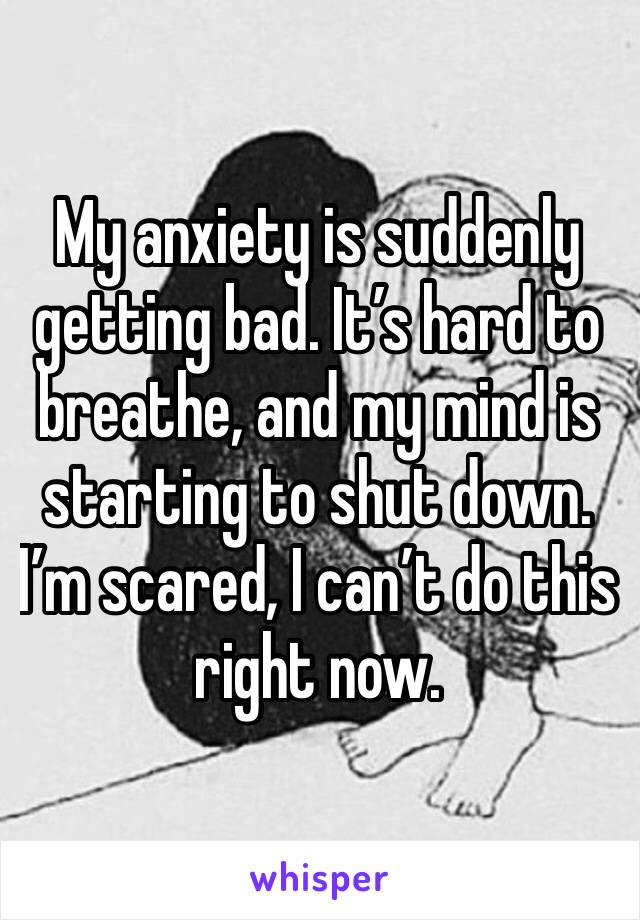 My anxiety is suddenly getting bad. It's hard to breathe, and my mind is starting to shut down. I'm scared, I can't do this right now.