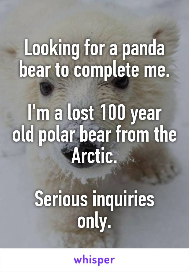 Looking for a panda bear to complete me.  I'm a lost 100 year old polar bear from the Arctic.  Serious inquiries only.