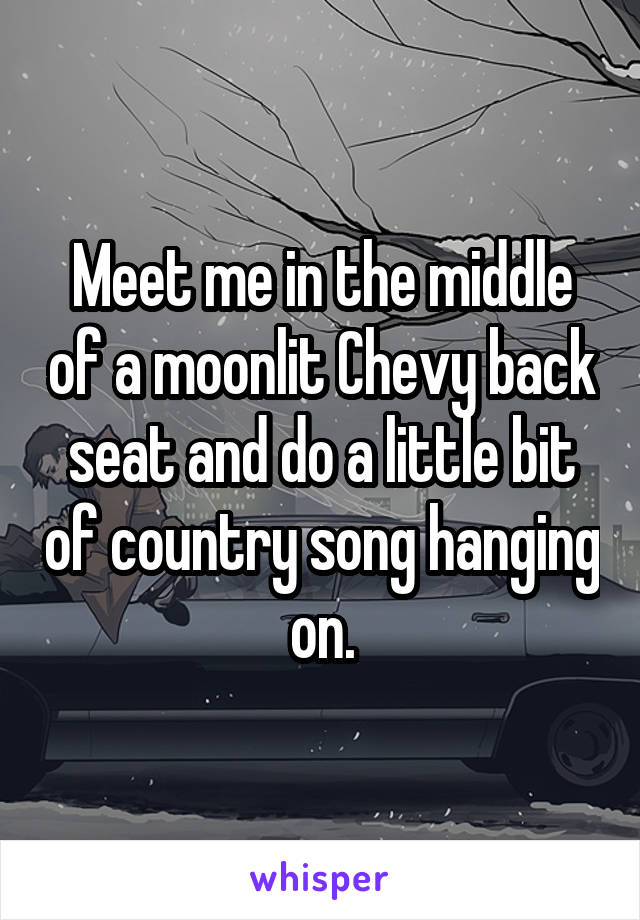 Meet me in the middle of a moonlit Chevy back seat and do a little bit of country song hanging on.