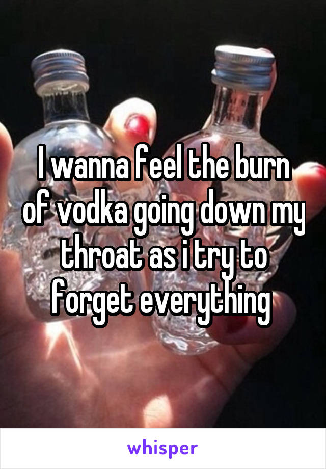 I wanna feel the burn of vodka going down my throat as i try to forget everything