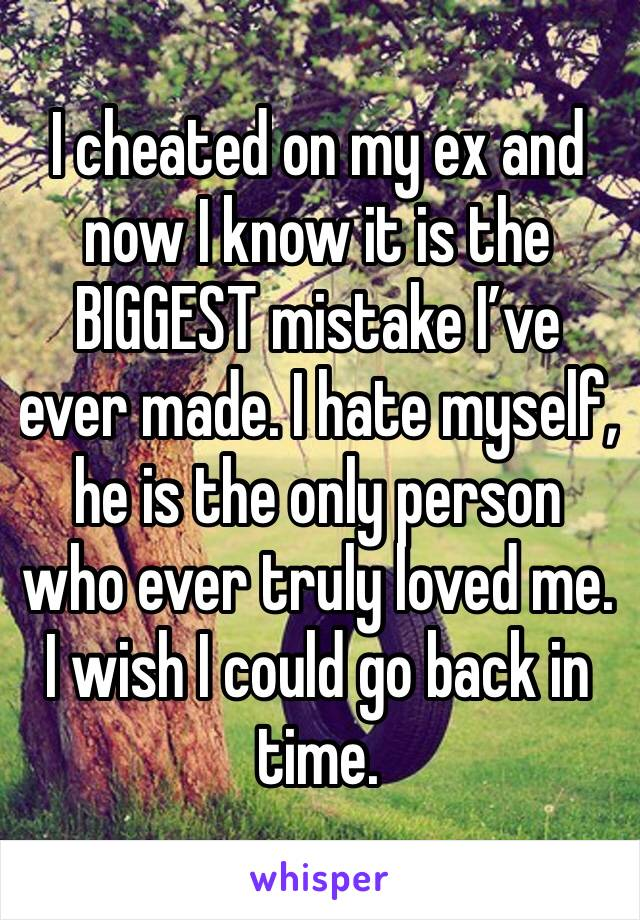 I cheated on my ex and now I know it is the BIGGEST mistake I've ever made. I hate myself, he is the only person who ever truly loved me. I wish I could go back in time.