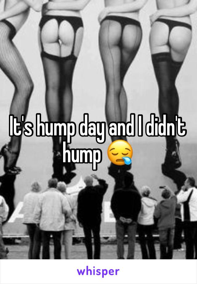 It's hump day and I didn't hump 😪