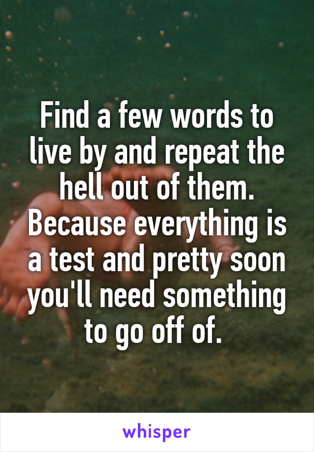 Find a few words to live by and repeat the hell out of them. Because everything is a test and pretty soon you'll need something to go off of.