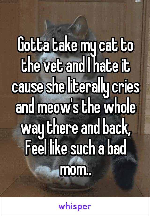 Gotta take my cat to the vet and I hate it cause she literally cries and meow's the whole way there and back, Feel like such a bad mom..