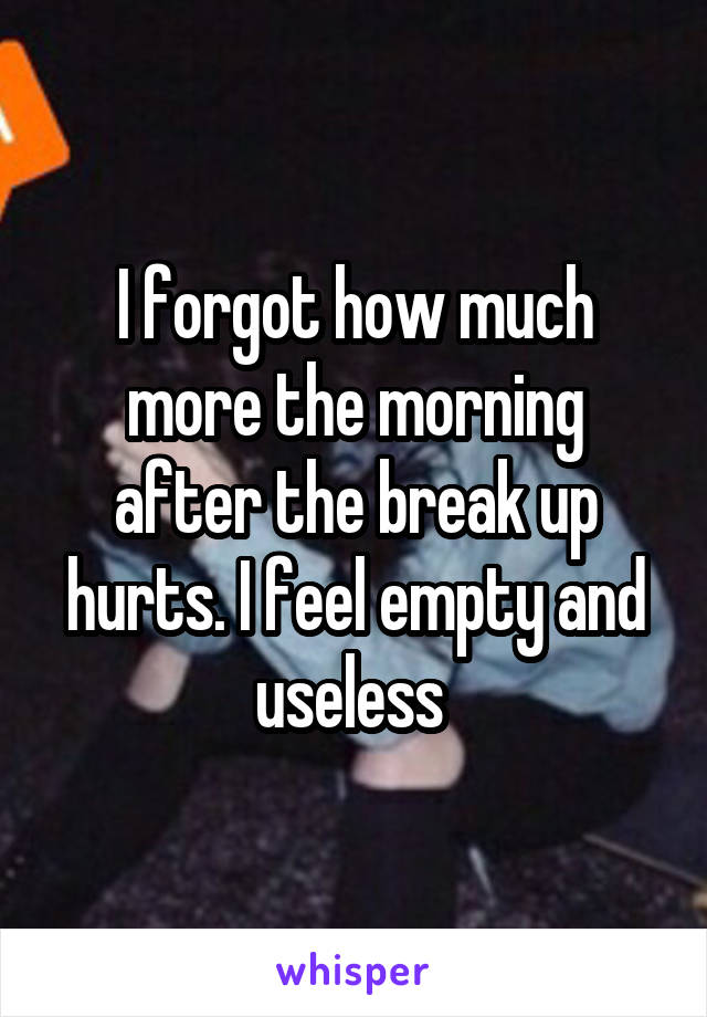 I forgot how much more the morning after the break up hurts. I feel empty and useless
