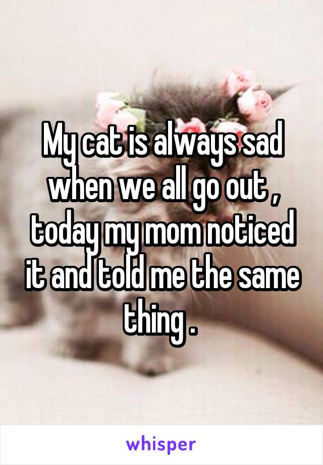 My cat is always sad when we all go out , today my mom noticed it and told me the same thing .