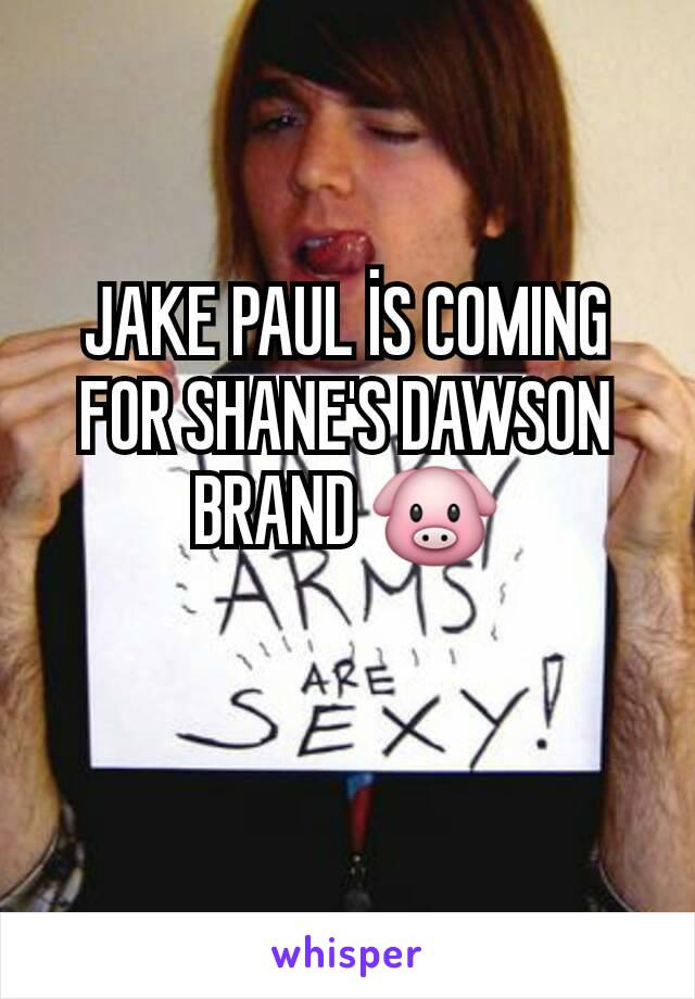 JAKE PAUL İS COMING FOR SHANE'S DAWSON BRAND 🐷