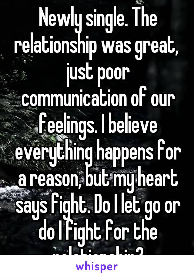 Newly single. The relationship was great,  just poor communication of our feelings. I believe everything happens for a reason, but my heart says fight. Do I let go or do I fight for the relationship?