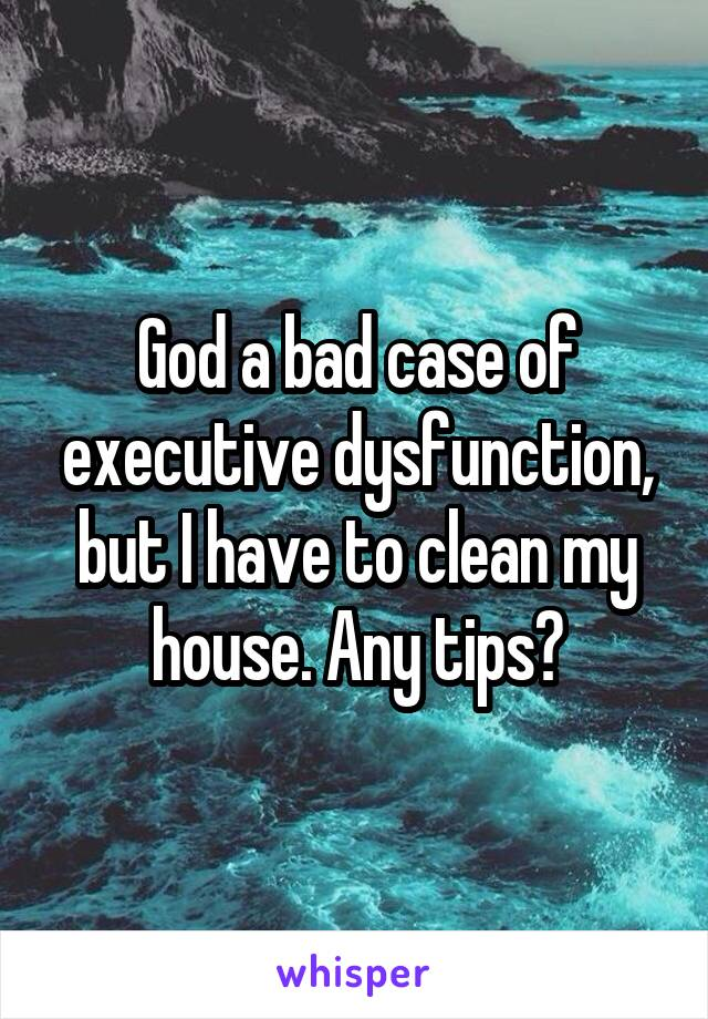 God a bad case of executive dysfunction, but I have to clean my house. Any tips?