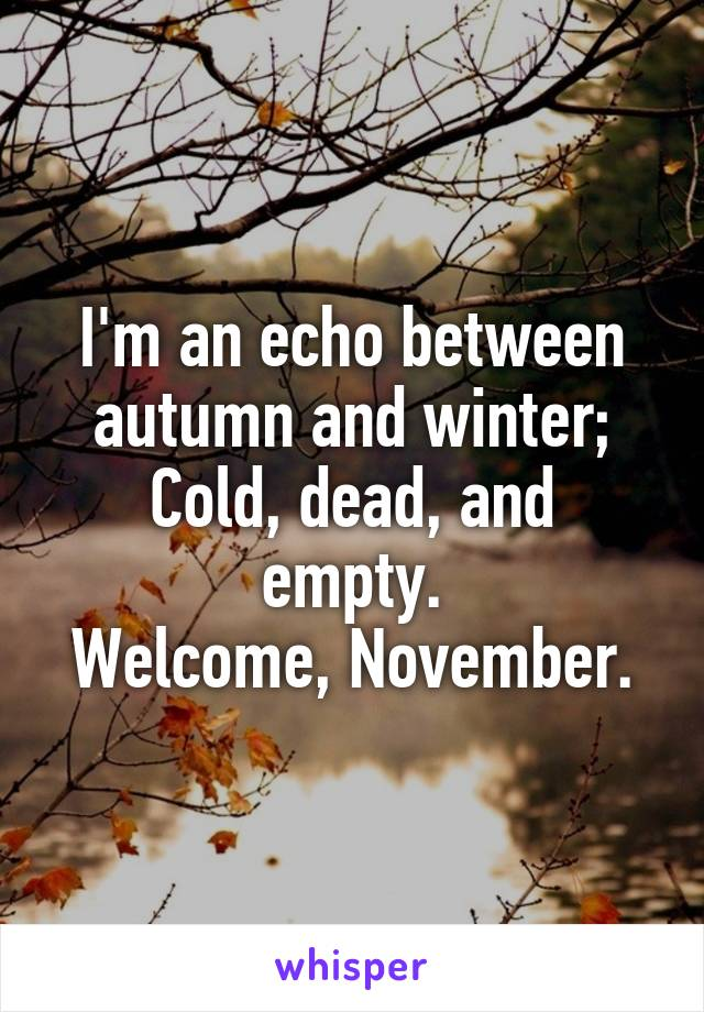 I'm an echo between autumn and winter; Cold, dead, and empty. Welcome, November.