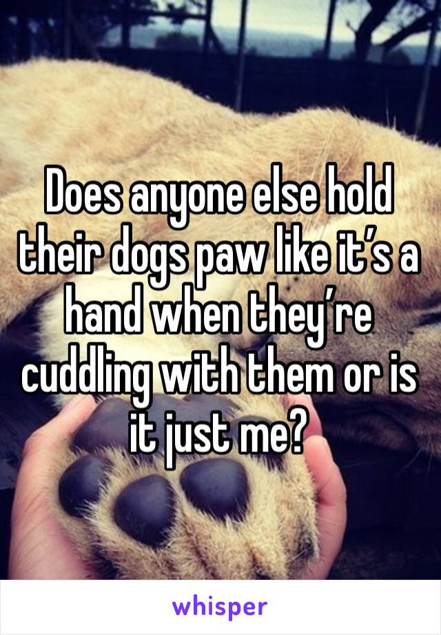 Does anyone else hold their dogs paw like it's a hand when they're cuddling with them or is it just me?