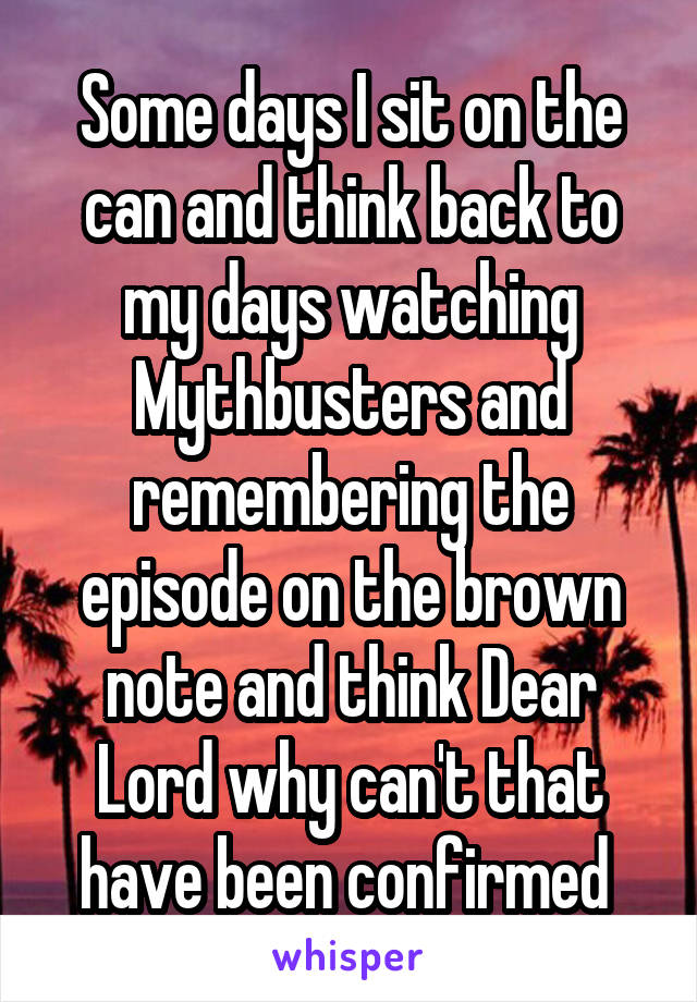 Some days I sit on the can and think back to my days watching Mythbusters and remembering the episode on the brown note and think Dear Lord why can't that have been confirmed