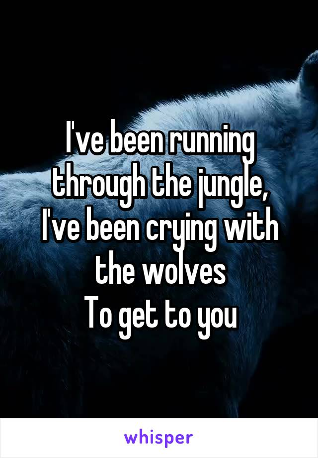 I've been running through the jungle, I've been crying with the wolves To get to you