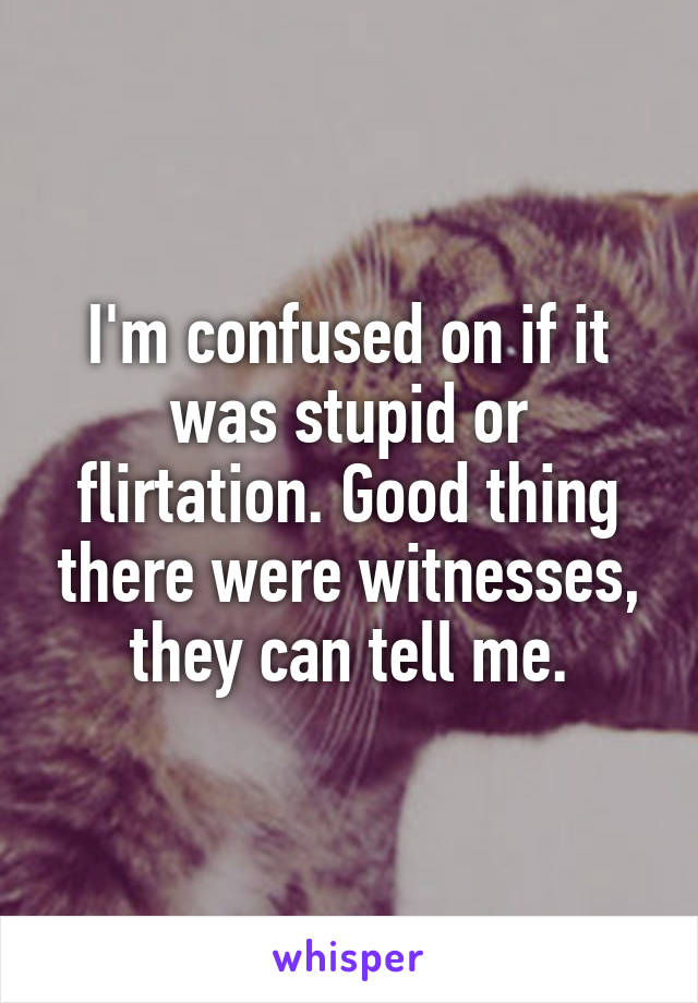 I'm confused on if it was stupid or flirtation. Good thing there were witnesses, they can tell me.