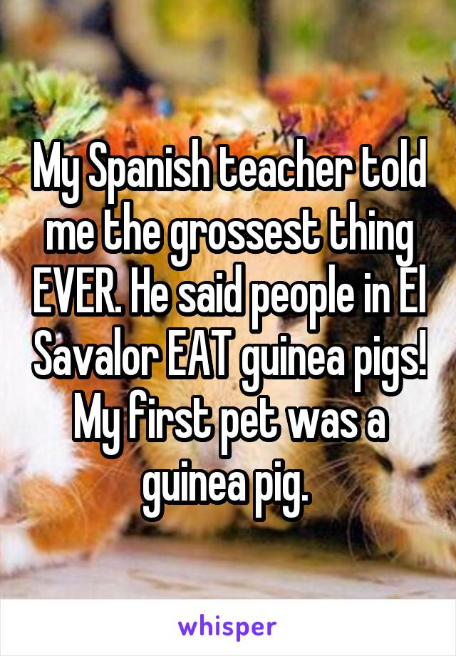 My Spanish teacher told me the grossest thing EVER. He said people in El Savalor EAT guinea pigs! My first pet was a guinea pig.