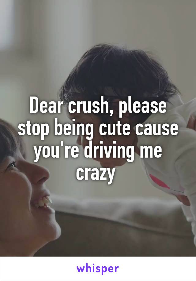 Dear crush, please stop being cute cause you're driving me crazy