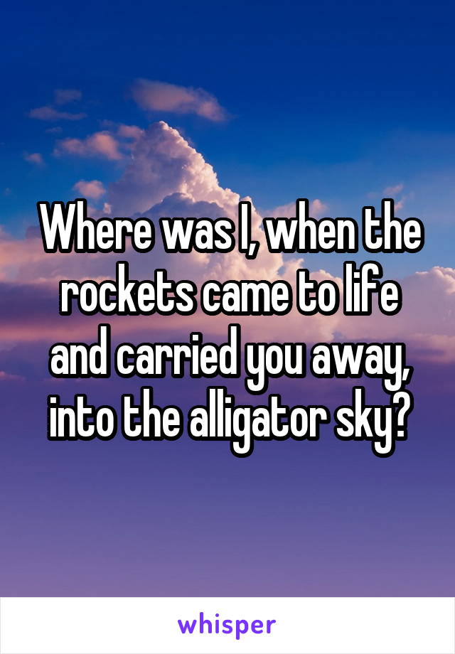 Where was I, when the rockets came to life and carried you away, into the alligator sky?