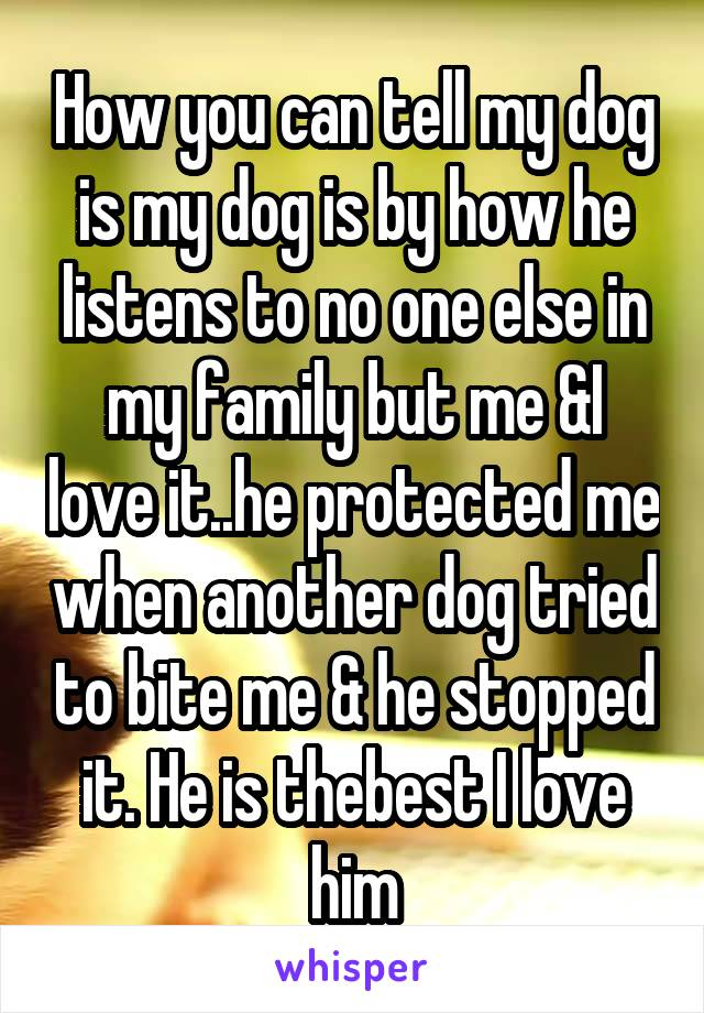 How you can tell my dog is my dog is by how he listens to no one else in my family but me &I love it..he protected me when another dog tried to bite me & he stopped it. He is thebest I love him