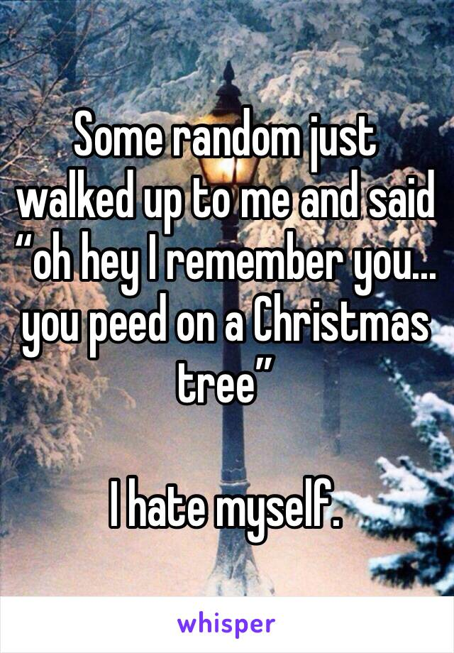 "Some random just walked up to me and said ""oh hey I remember you... you peed on a Christmas tree""  I hate myself."