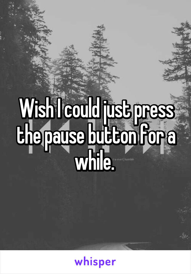 Wish I could just press the pause button for a while.