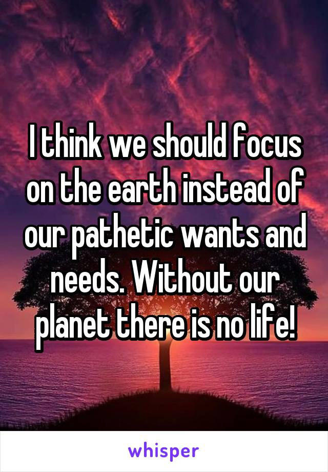 I think we should focus on the earth instead of our pathetic wants and needs. Without our planet there is no life!