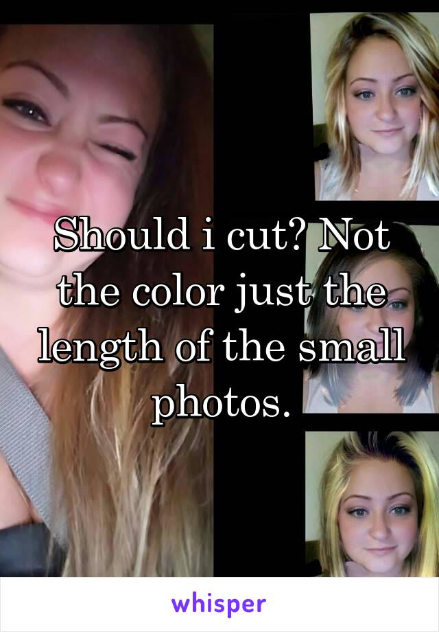 Should i cut? Not the color just the length of the small photos.