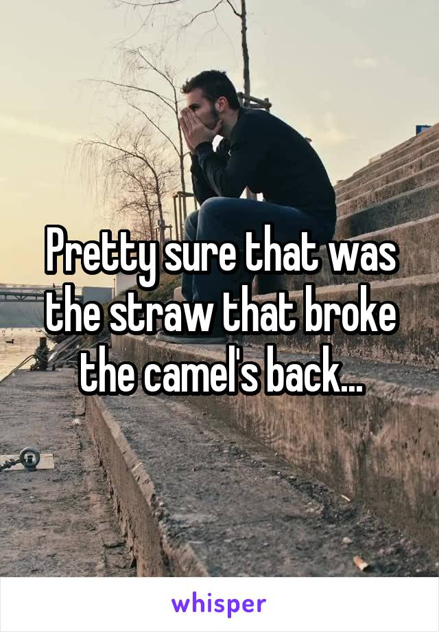 Pretty sure that was the straw that broke the camel's back...