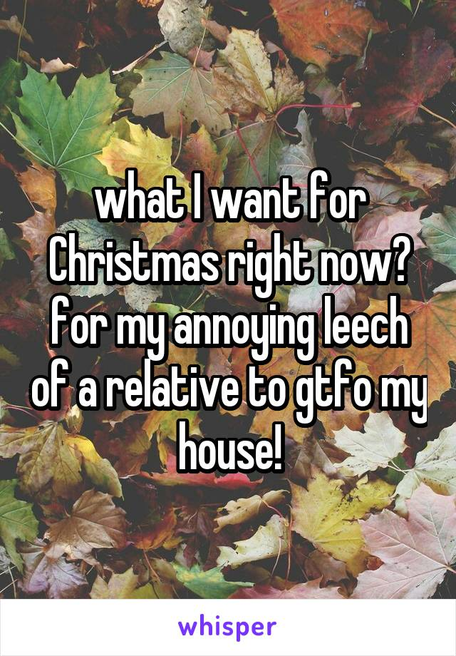 what I want for Christmas right now? for my annoying leech of a relative to gtfo my house!
