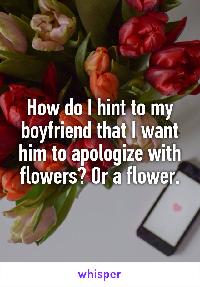 How do I hint to my boyfriend that I want him to apologize with flowers? Or a flower.