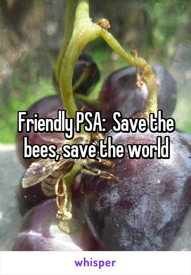 Friendly PSA:  Save the bees, save the world