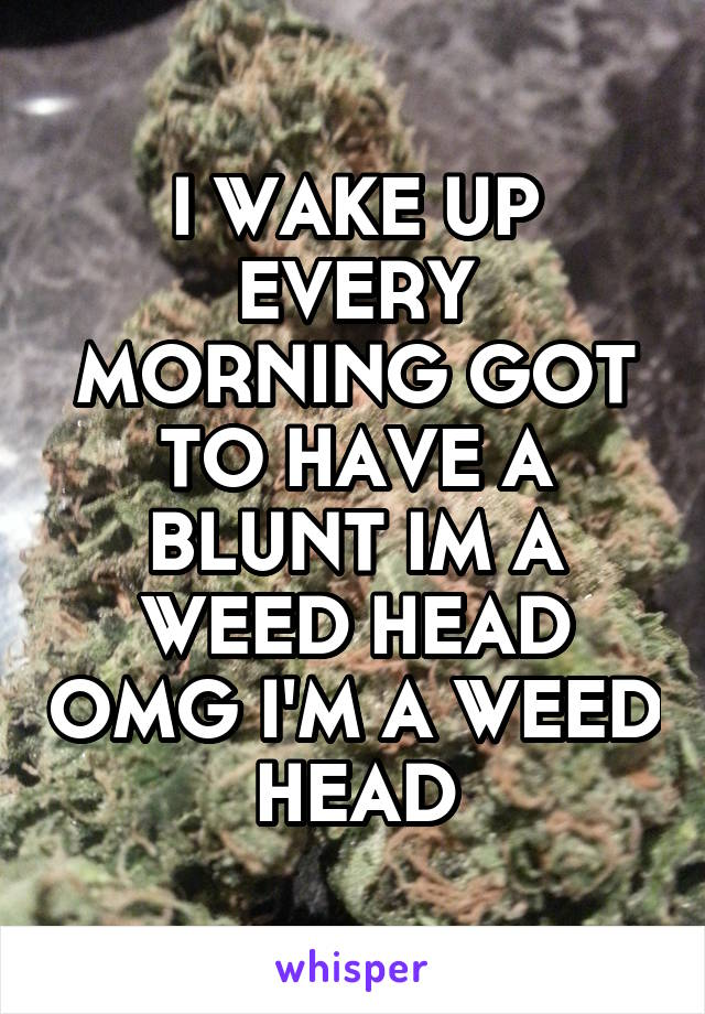 I WAKE UP EVERY MORNING GOT TO HAVE A BLUNT IM A WEED HEAD OMG I'M A WEED HEAD