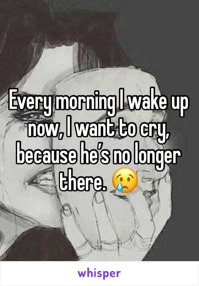 Every morning I wake up now, I want to cry, because he's no longer there. 😢