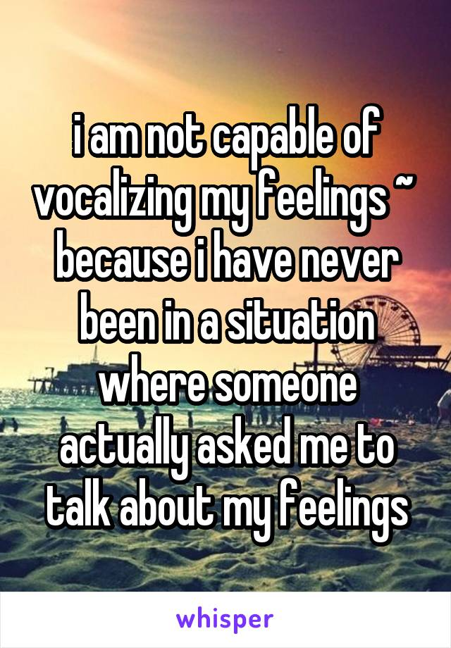 i am not capable of vocalizing my feelings ~  because i have never been in a situation where someone actually asked me to talk about my feelings