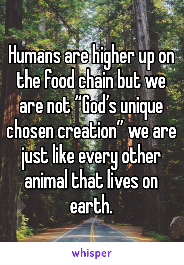 """Humans are higher up on the food chain but we are not """"God's unique chosen creation"""" we are  just like every other animal that lives on earth."""