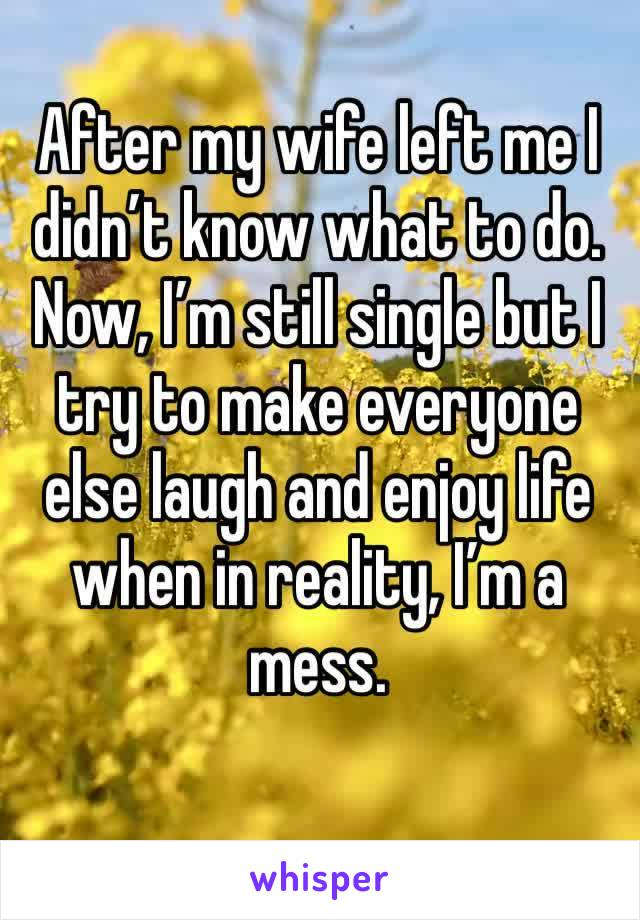 After my wife left me I didn't know what to do. Now, I'm still single but I try to make everyone else laugh and enjoy life when in reality, I'm a mess.