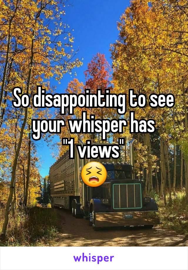 "So disappointing to see your whisper has ""1 views"" 😣"