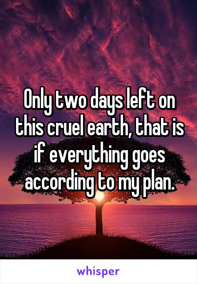 Only two days left on this cruel earth, that is if everything goes according to my plan.