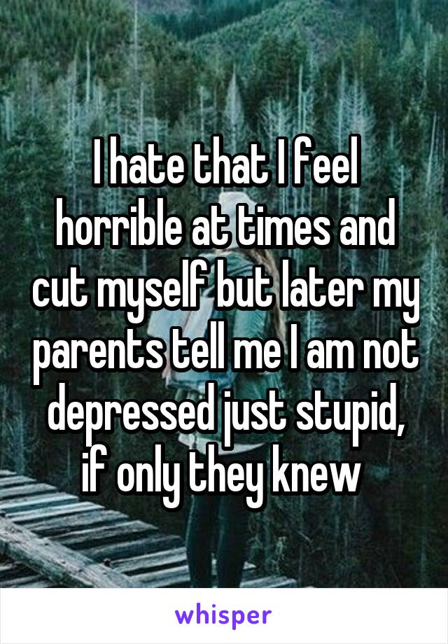 I hate that I feel horrible at times and cut myself but later my parents tell me I am not depressed just stupid, if only they knew