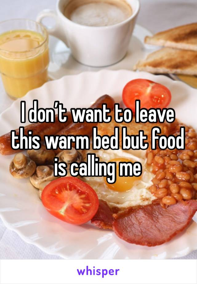 I don't want to leave this warm bed but food is calling me