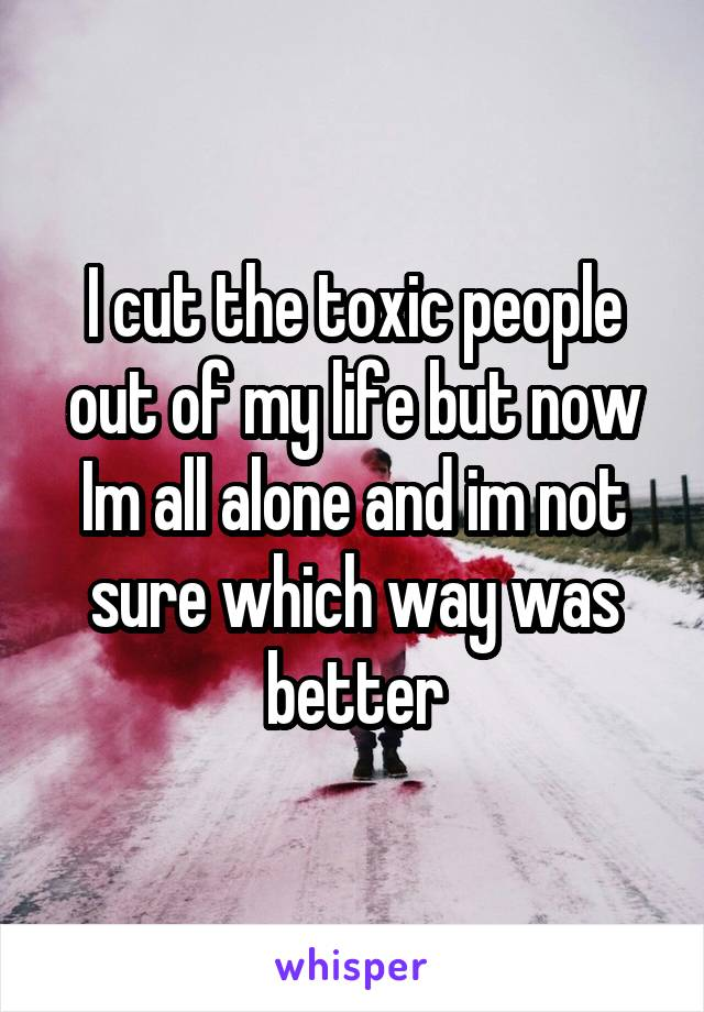 I cut the toxic people out of my life but now Im all alone and im not sure which way was better