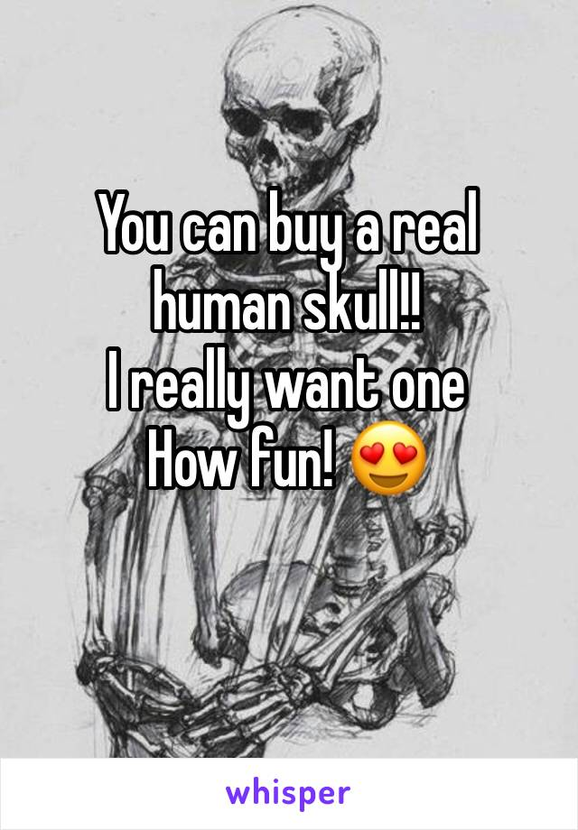 You can buy a real human skull!! I really want one  How fun! 😍