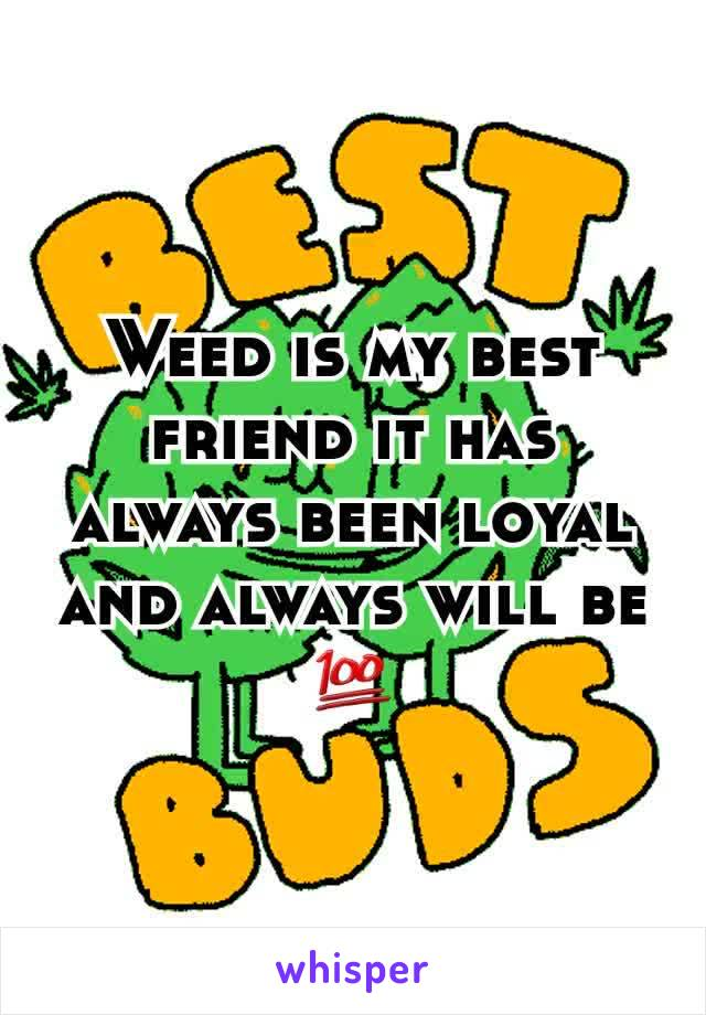 Weed is my best friend it has always been loyal and always will be 💯